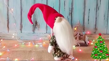 How to Make A Christmas Gnome