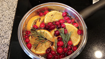 Holiday stovetop potpourri recipe crockpot
