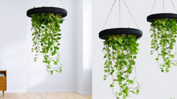 DIY Money Plant Hanging Planter From Bike Tire | Upcycling Crafts